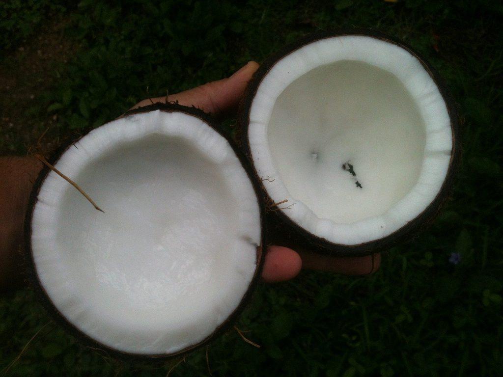 coconut, oil, white